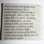Family-Friendly Travel: Should Airlines Segregate?