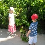 Why parents not only can, but should take their kids to the Catalunya Vineyards