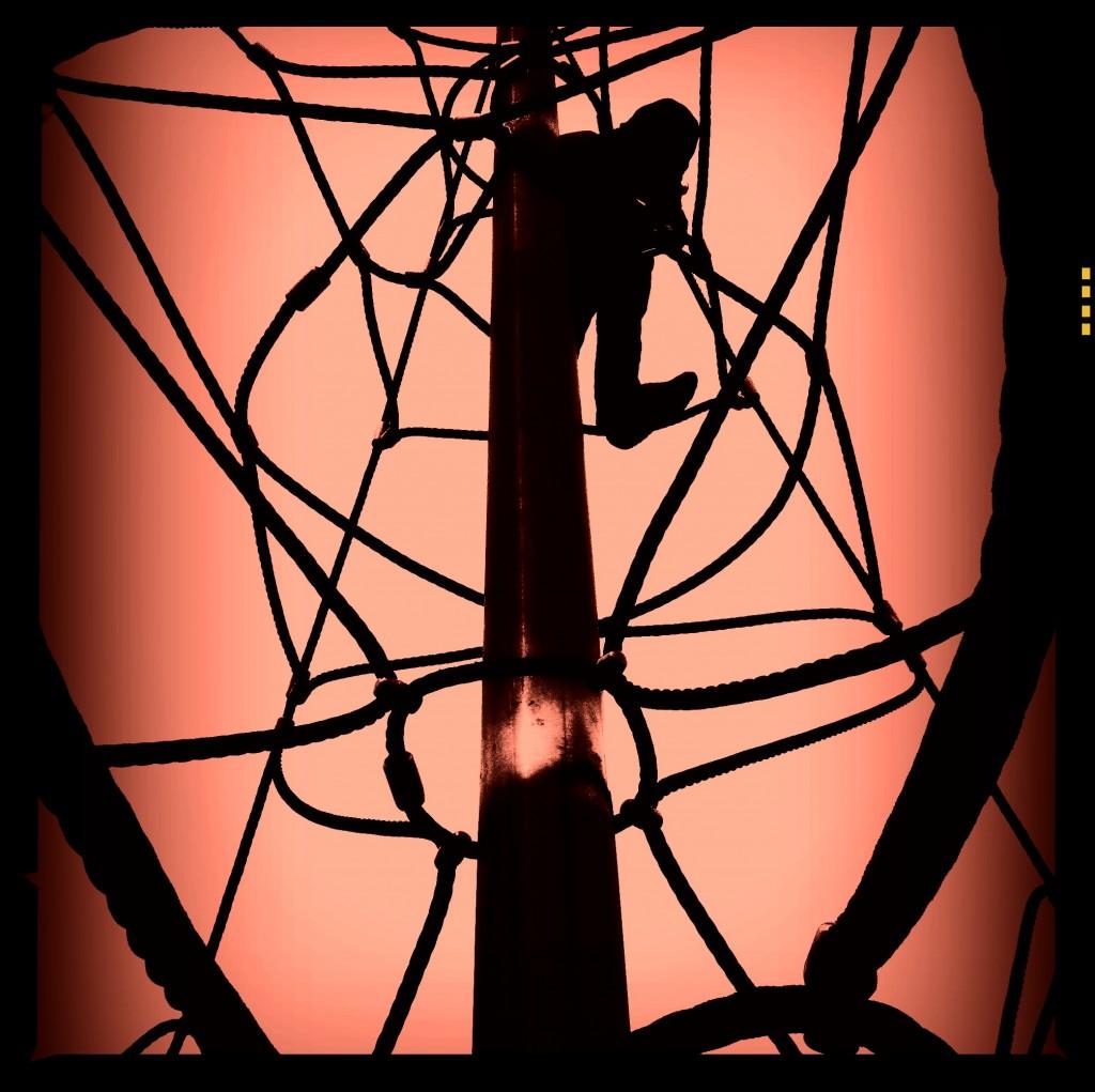"""spider web climbing frame"""