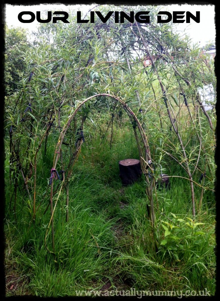 """Living Willow Den"""