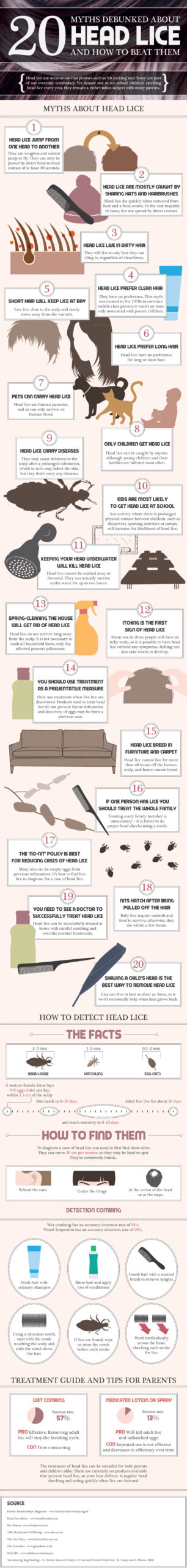 20-facts-about-headlice