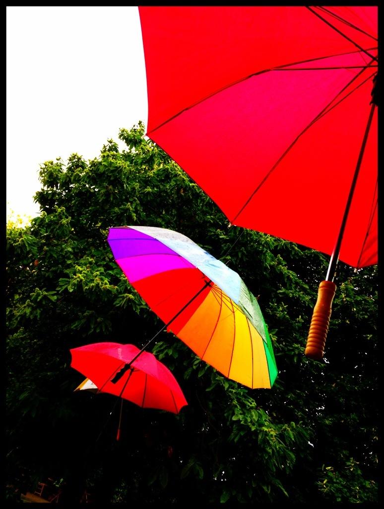 """""""umbrellas in the sun"""""""