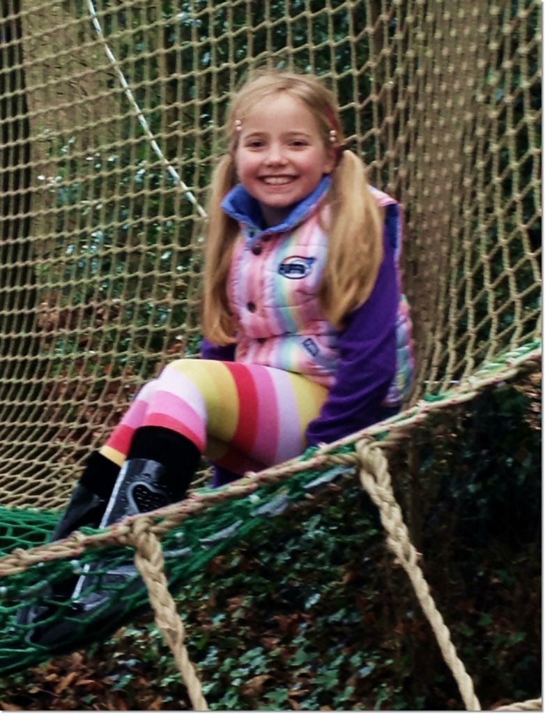Adventure Playground nets at Aldenham Country Park