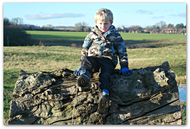 Experimenting with light - probably too much light but I love his outline on the whorly log
