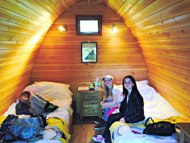 Sleepover at the zoo: inside the Lookout Lodges at Whipsnade there is every comfort