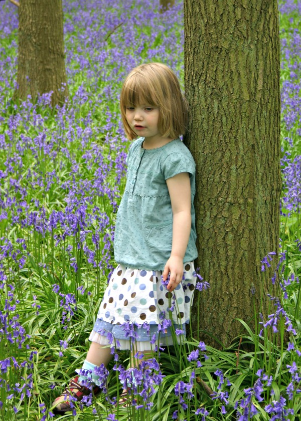 Where to see bluebells in Hertfordshire - Ringshall