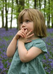 Photographing in the bluebells at Ringshall