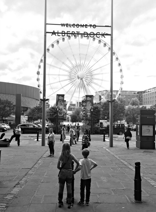 BW Echo Wheel Albert Dock
