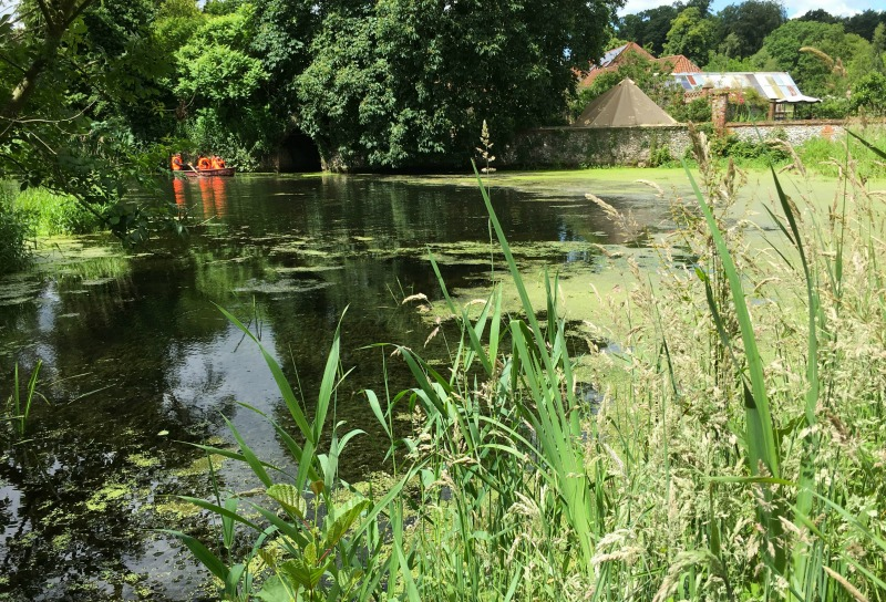There's a boating lake at West Lexham, and it feels so very Famous Five to paddle up and down with the kids - they even learned to say rowlocks correctly!