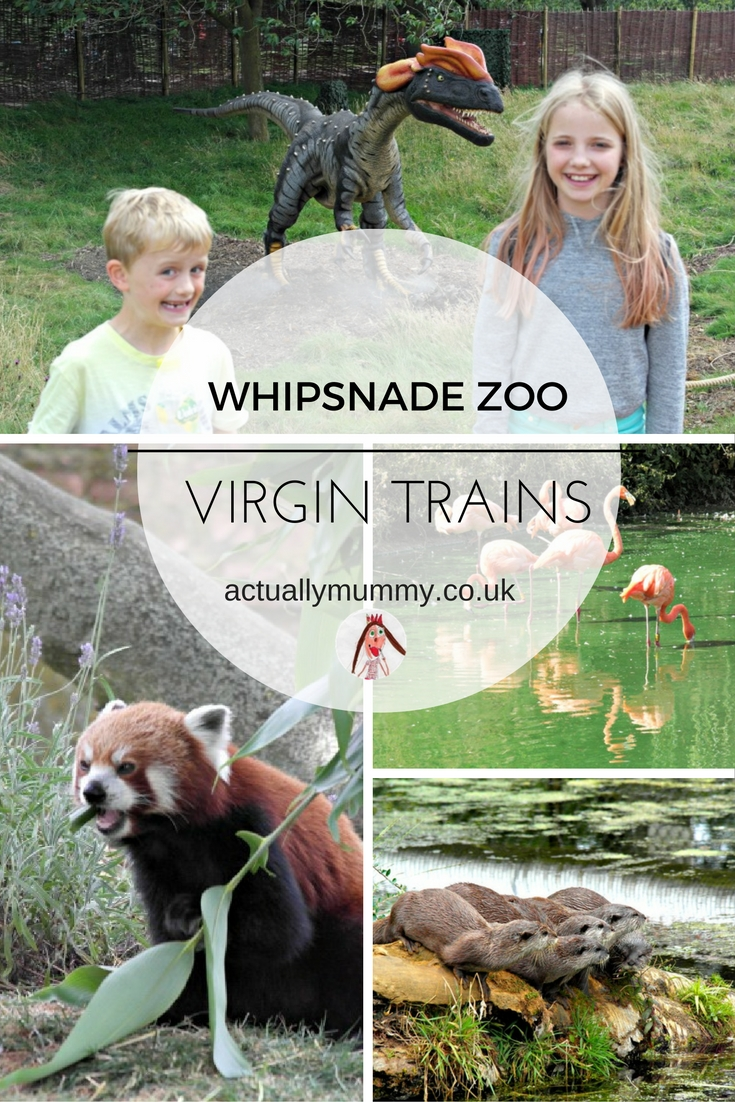 There are all sorts of animals at Whipsnade Zoo - the latest addition is Dinosaurs!